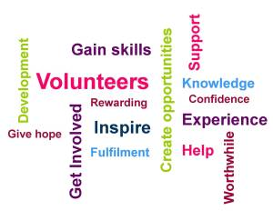 volunteer-Wordle